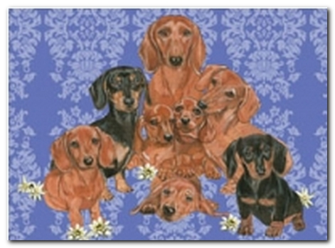Dachshund family blank greeting cards dachshund products for doxie dachshund family blank greeting cards m4hsunfo