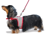 Hug-A-Dog Harness (in mesh)