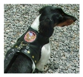 Hug-A-Dog Harness® Biker Vest