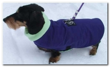 Hug-A-Dog Cuddler™ Dachshund Coat (Water Resistant)