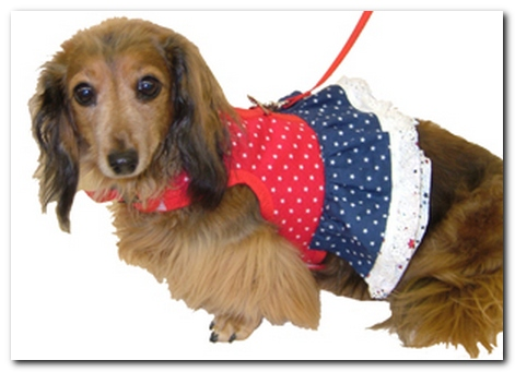 Hug-A-Dog Harness® Dress